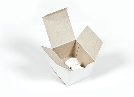 Box 5 – Folding Carton (B1)