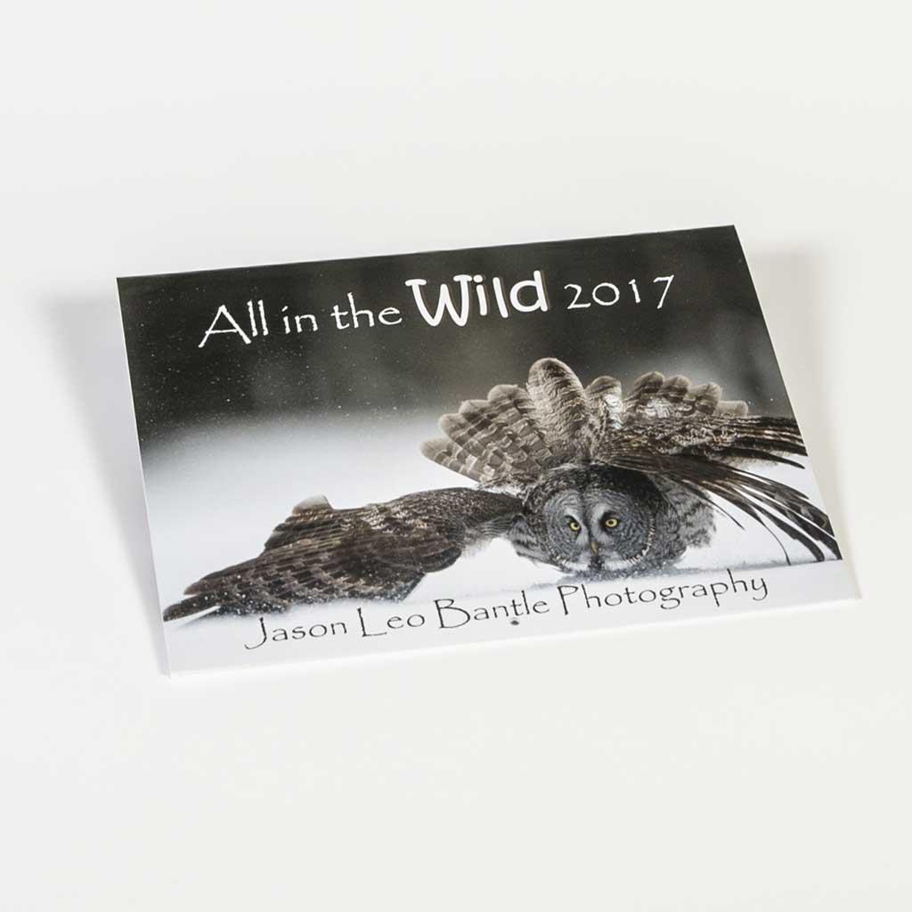 Jason Bantle Calendar 2017
